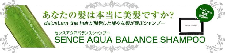 Shampoo banner